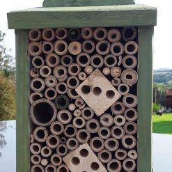 Bee and friends hotel