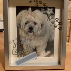 Pet memorial deep box photo frames