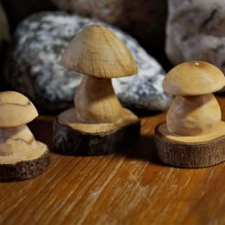 3 Hand carved Wooden Mini Mushrooms