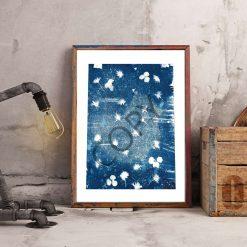 Original Cyanotype