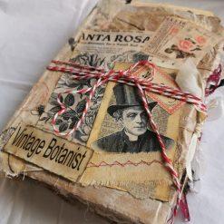Vintage Botanist Memory Book