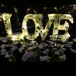"Battery powered""Love"" light with hydrangea petals"