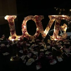"""Battery powered """"Love"""" light with pink rose petals"""