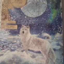 Snow Wolf Arctic Aurora (A4 canvas) 5