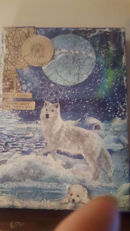 Snow Wolf Arctic Aurora (A4 canvas) 3