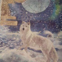 Snow Wolf Arctic Aurora (A4 canvas) 4