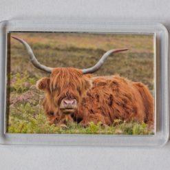 Sunset Highland Cow Fridge Magnet  - Great Stocking Filler