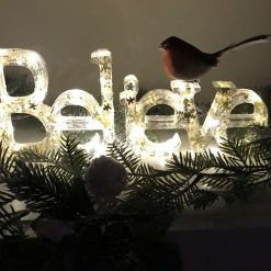 "Battery powered ""Believe"" light with Robin"