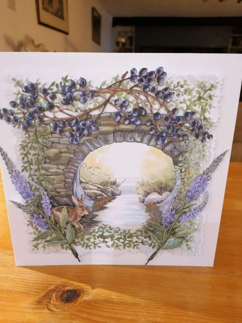 Nature Cards 2