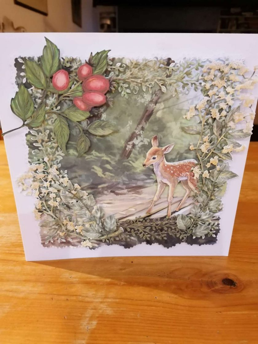 Nature Cards 1