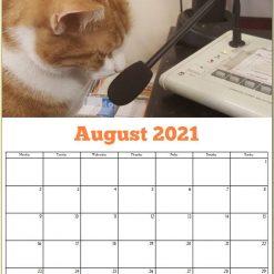 George the Stourbridge Junction Station Cat 2021 Calendar 22