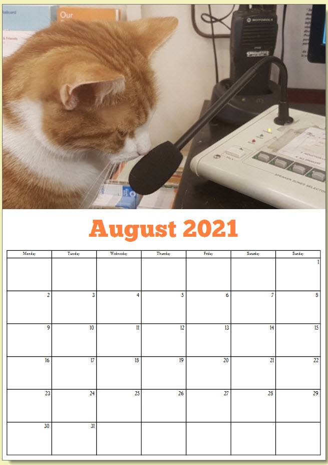 George the Stourbridge Junction Station Cat 2021 Calendar 9