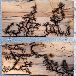 Double Hanging Lichtenberg Fractal Wall Art, One Of A Kind.