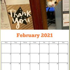 George the Stourbridge Junction Station Cat 2021 Calendar 16