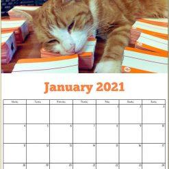 George the Stourbridge Junction Station Cat 2021 Calendar 15