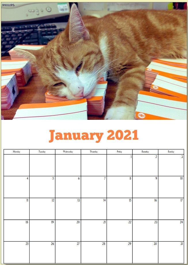 George the Stourbridge Junction Station Cat 2021 Calendar 2