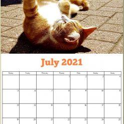 George the Stourbridge Junction Station Cat 2021 Calendar 21