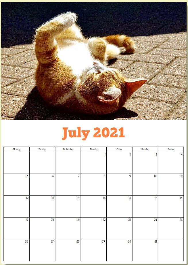 George the Stourbridge Junction Station Cat 2021 Calendar 8
