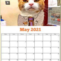 George the Stourbridge Junction Station Cat 2021 Calendar 19