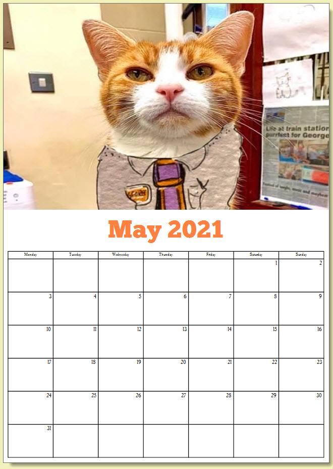 George the Stourbridge Junction Station Cat 2021 Calendar 6
