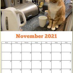 George the Stourbridge Junction Station Cat 2021 Calendar 24