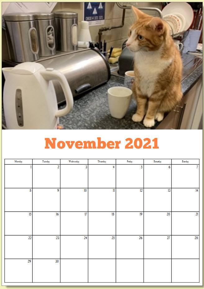 George the Stourbridge Junction Station Cat 2021 Calendar 11