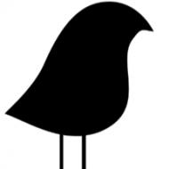 Rainbow Crowe